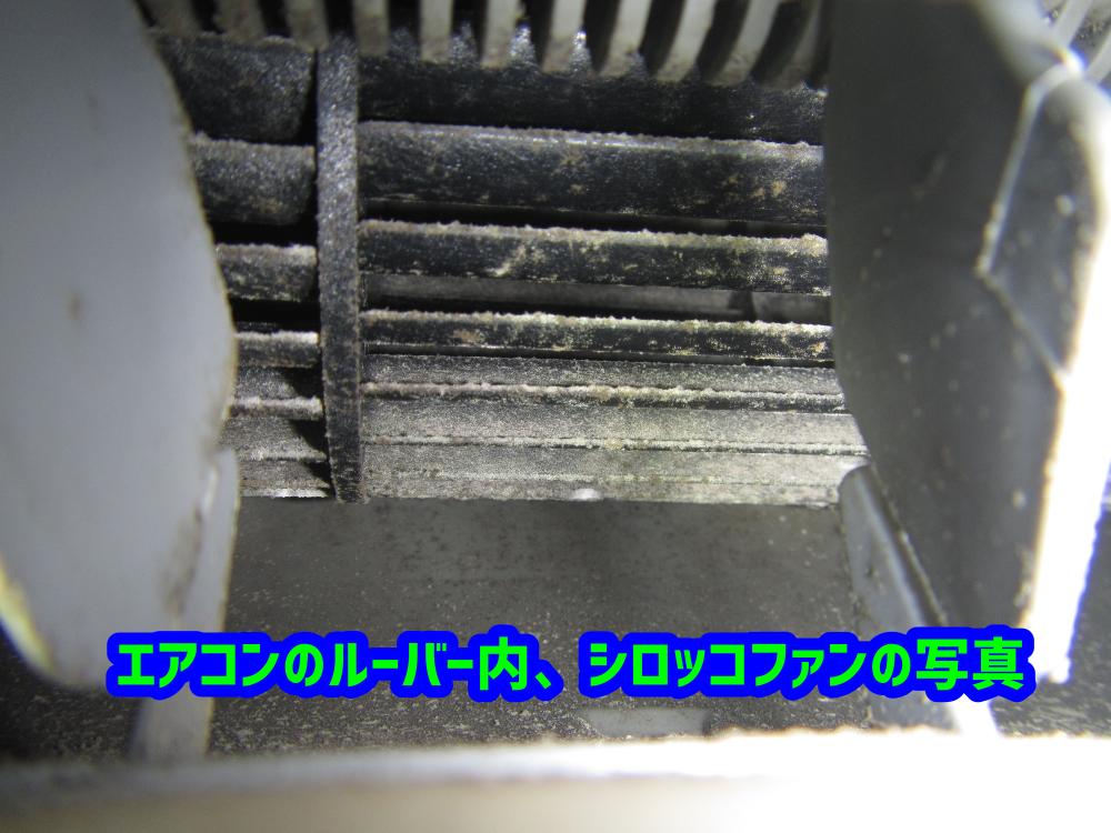 エアコンルーバー内のカビ写真 洗浄で落とす